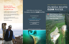 Florida Water Coalition brochure